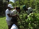 High Schoolers Experience Preserve's Conservation Horticulture Program