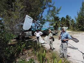 Lepidoptera Scientists visit The Levy Preserve